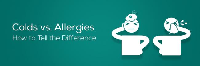 PRM_Blog-header-cold-allergy
